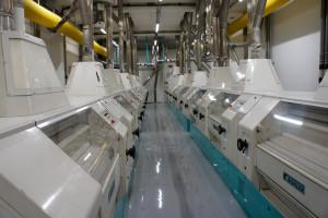 Les moulins à cylindres du Moulin du Fromenteau. La capacité d'écrasement de l'outil est de 450T/jour.